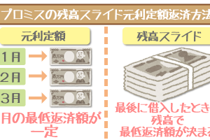 promise-repayment-scheme-1