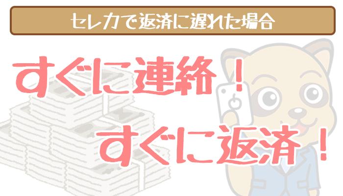 shizugin-delinquency-1