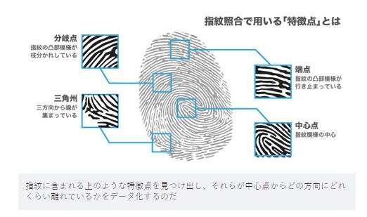 指紋照合で用いる「特徴点」